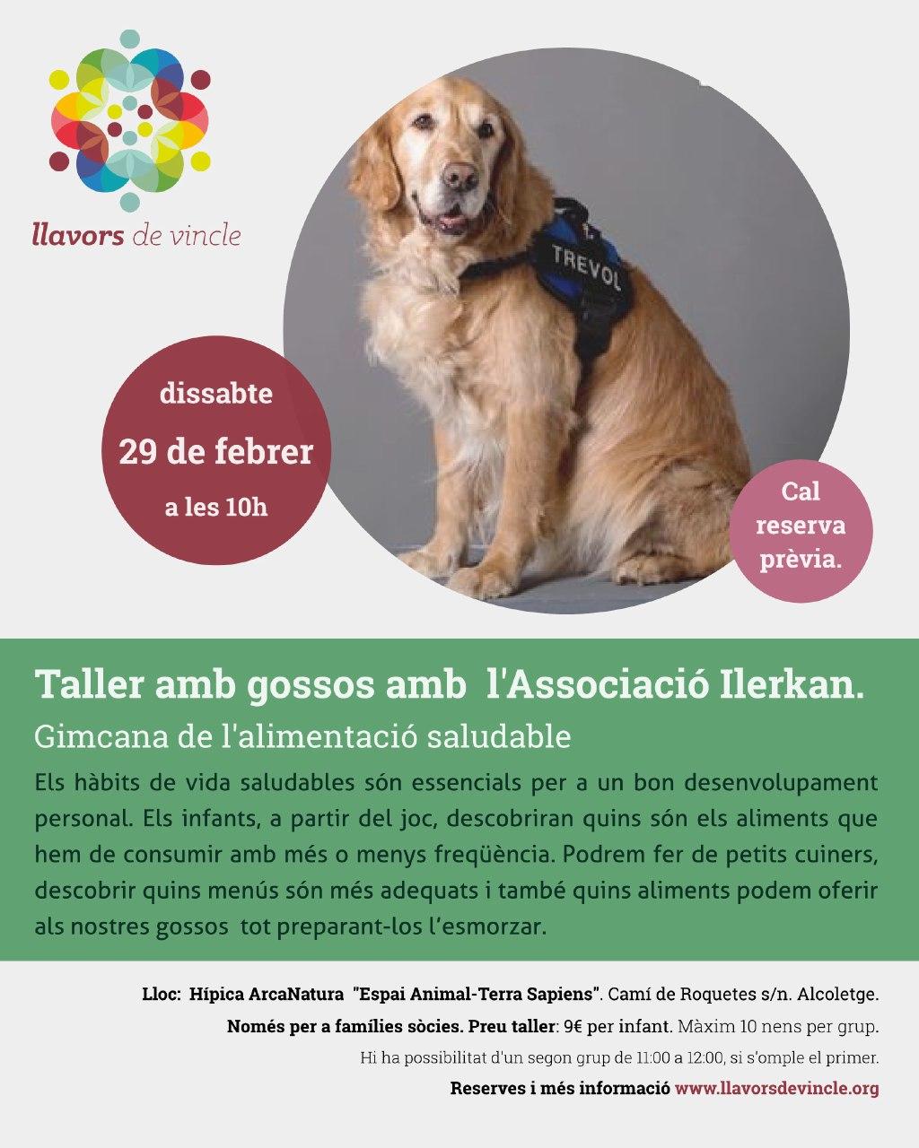 Taller amb gossos amb l'Associació Ilerkan