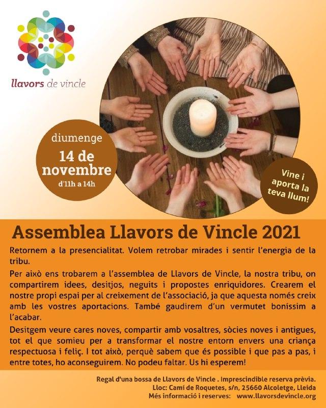 Assemblea Llavors de Vincle 2021